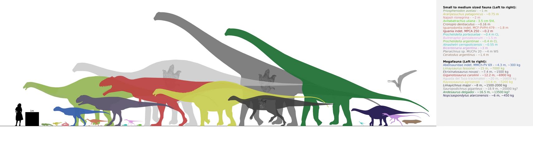 Candeleros Formation fauna