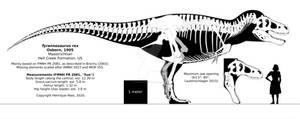 Tyrannosaurus rex skeletal reconstruction.