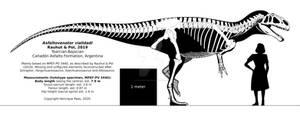 Asfaltovenator vialidadi skeletal reconstruction.