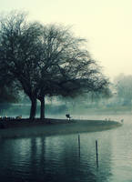 Morning Gloom at the Duck Pond by Corrineak