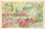Colorfoul Garden