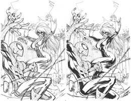 Spidey vs Blackcat by devgear