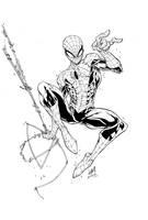Spiderman Inks by devgear
