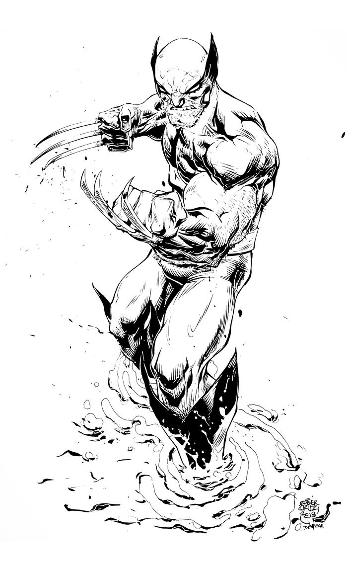 High Res   Wolverine  by devgear