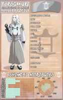 Asukai Sougen - Pre Time Skip Profile by XxYorunoHimexX