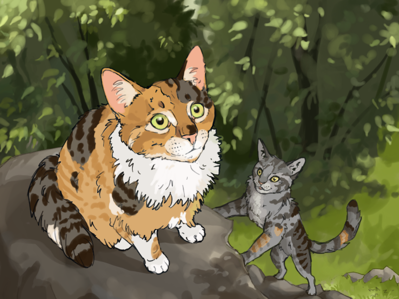 Blossomfall and Bumblestripe (warriors cats) by ...