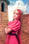 Princess Bubblegum - That's my kingdom by RinokoCosplay