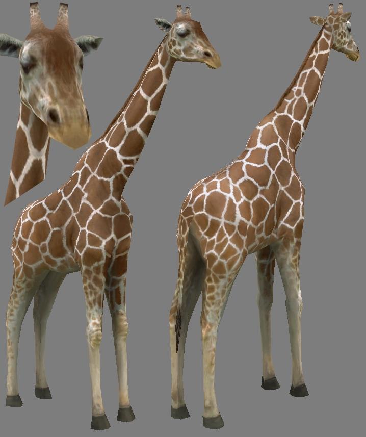 Giraffe by parallelno