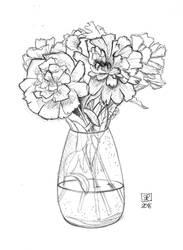 Pivoines Flowers