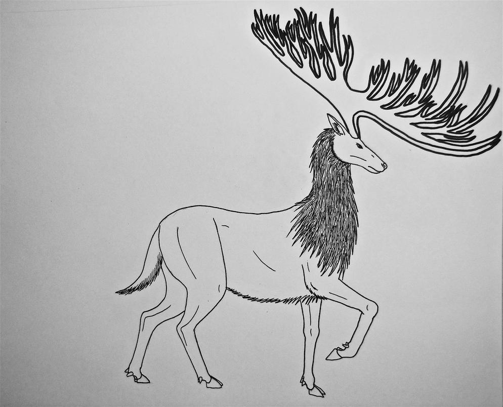 Line Drawing Deer : Drawings susan siegel