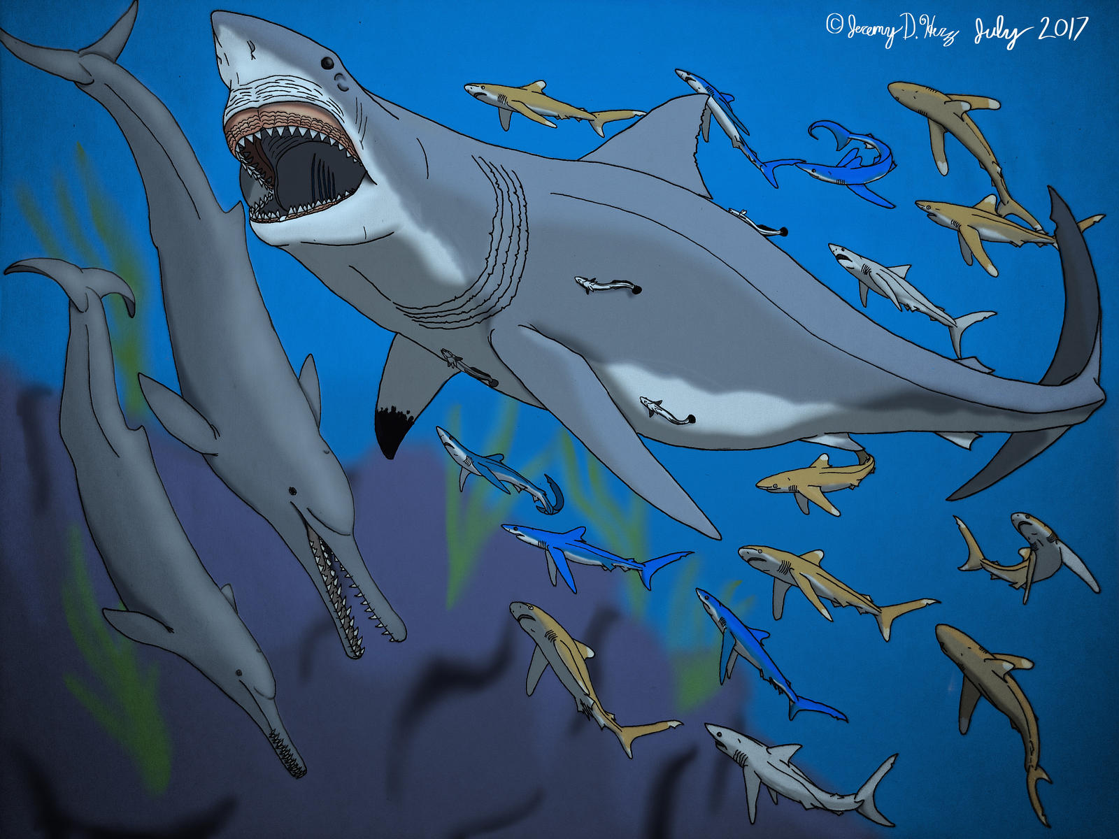 Megalodon Shark Coloring Pages 405991 55 Inch Megalodon