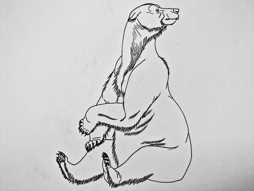 polar bear sitting down by saberrex on deviantart