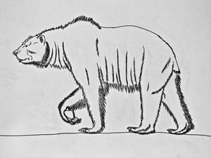 Arctodus simus- The Short-faced bear
