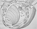 Panthalasson- The Water Elemental by Saberrex