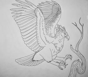 Harpy Eagle Landing
