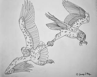 Battle of the Eagles