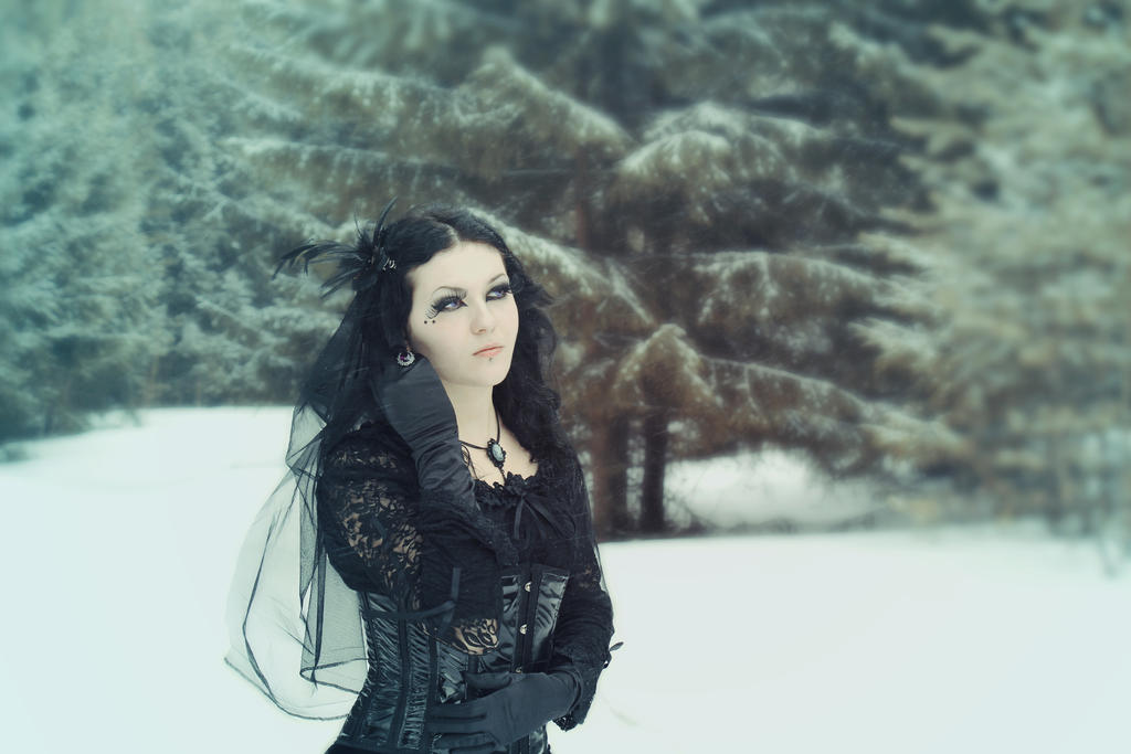 Gothic winter stock by MysteriaViolentStock