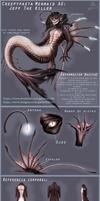[Creepypasta AU-SPANISH]Mermaid Jeff The Killer