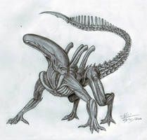 Alien by GrimShady