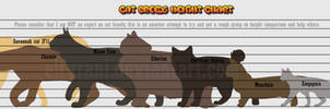 Guide to Cat Breed Heights! by elTyranda