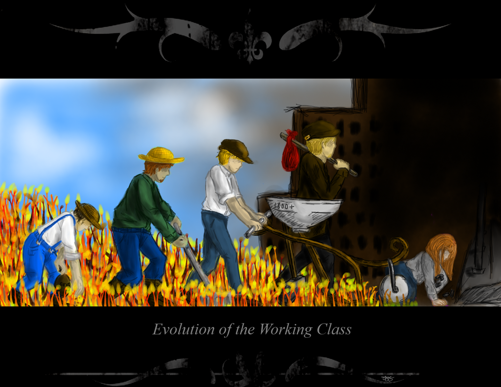 Evolution of the Working Class by bloom987654322