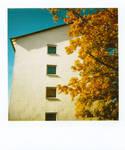 Polaroid - Urban Autumn 4 by LightOfThe80ies