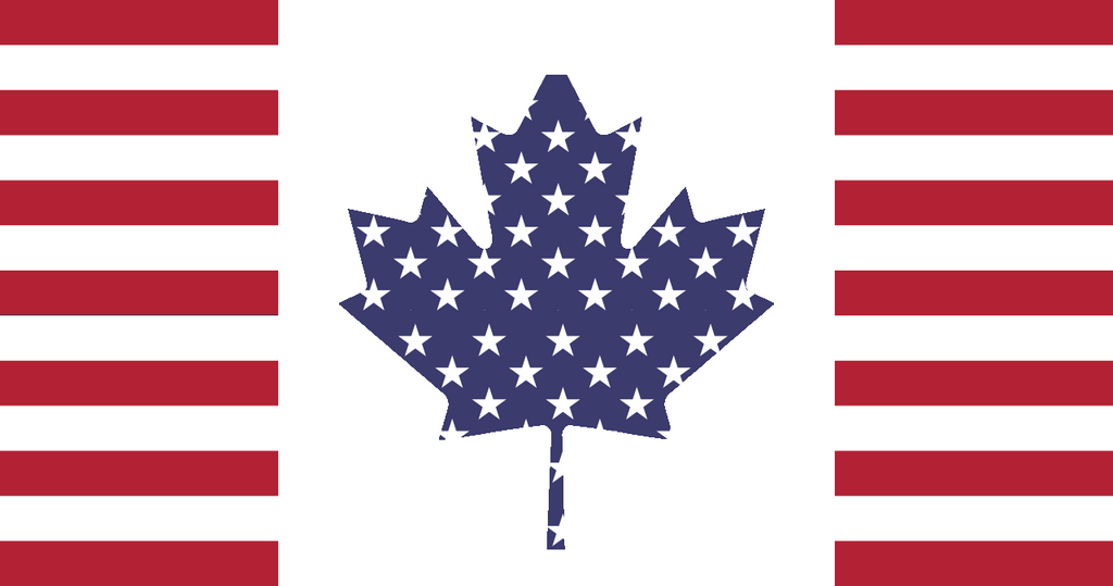 how to work in the states as a canadian