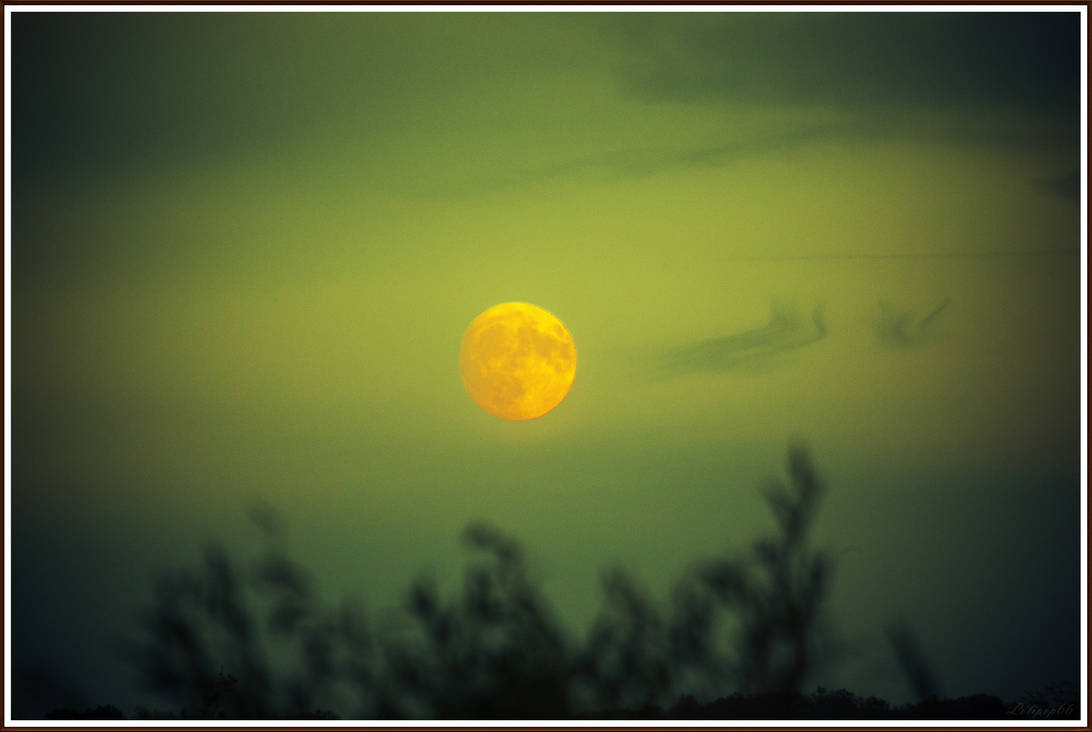 The killing moon by Lolipop66