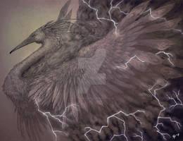 Storm Birb