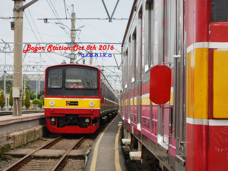 Bogor and The Beauty of Indonesian Railway