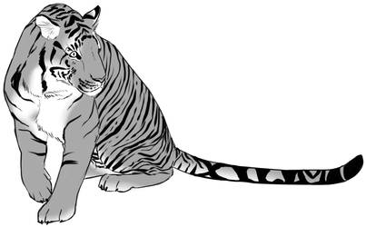 Tiger Sitting Sketch