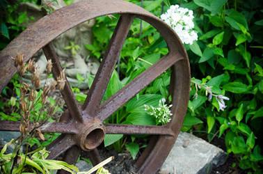 Garden Wheel by alyssvisuals