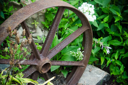 Garden Wheel