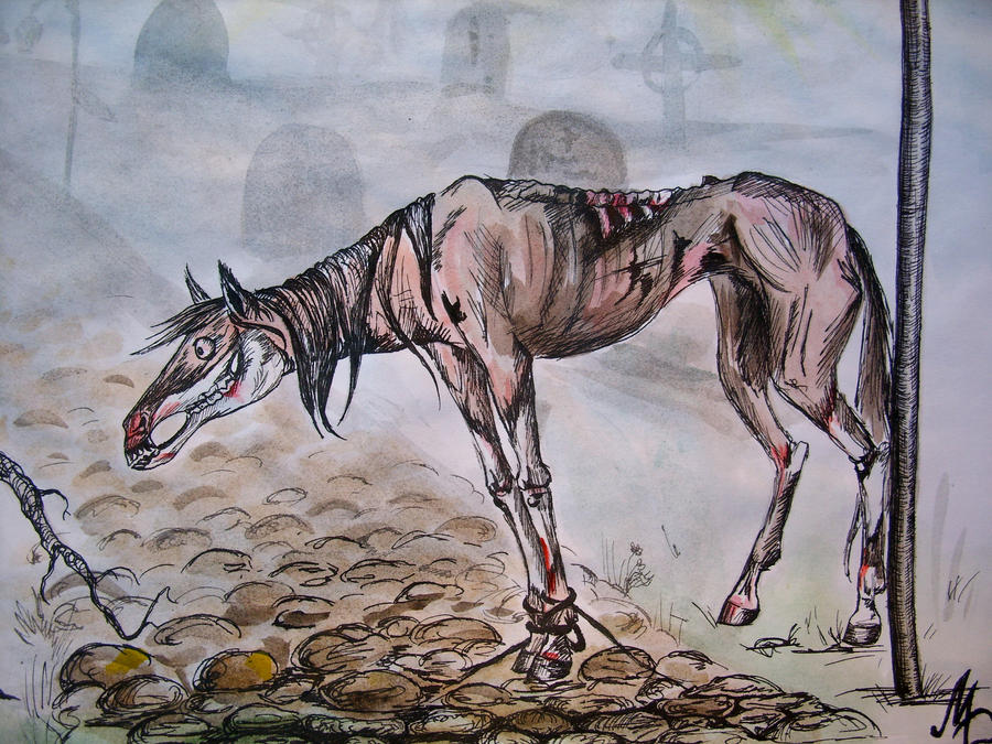 Zombie Horse Drawing