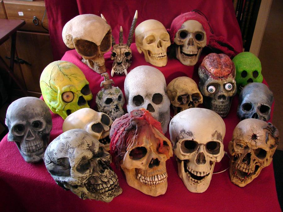 [Image: my_skull_collection_by_mistgod-d56wvjk.jpg]