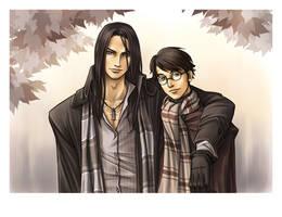 Sirius et Harry