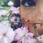 Delicate Flower by xfallxoutxgirlsx