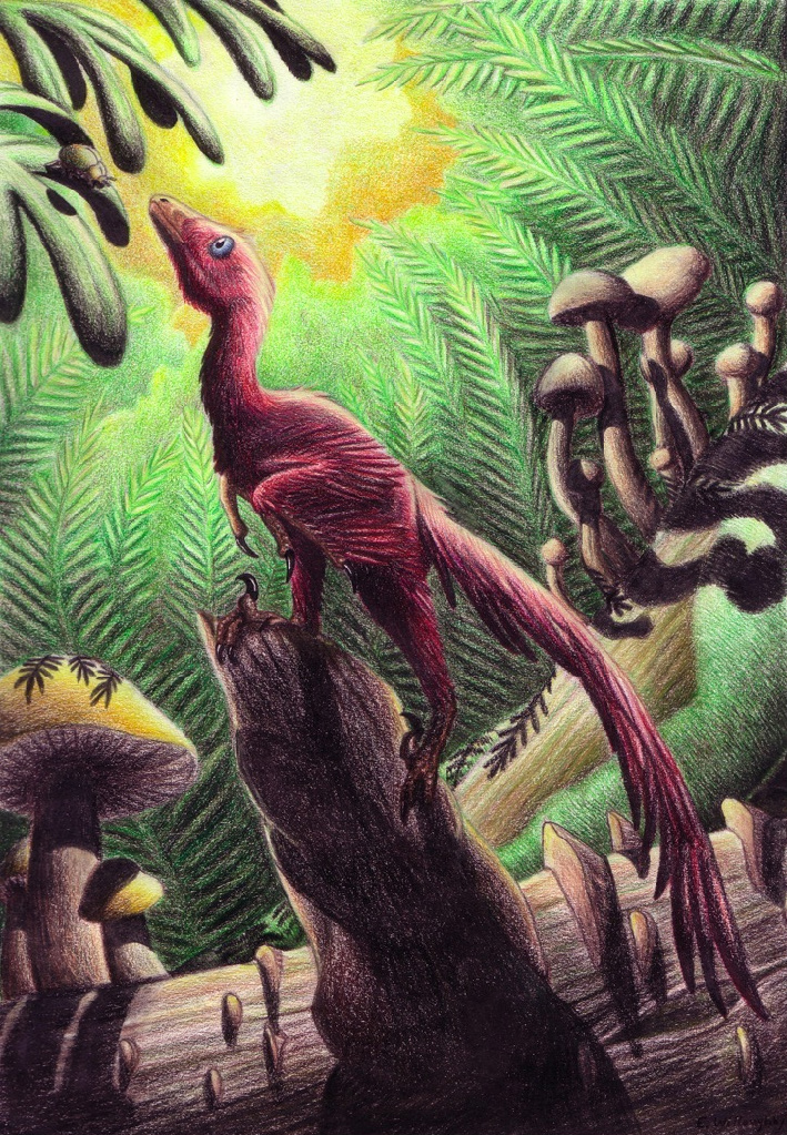 Jinfengopteryx by EWilloughby