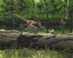 Anchiornis - old version