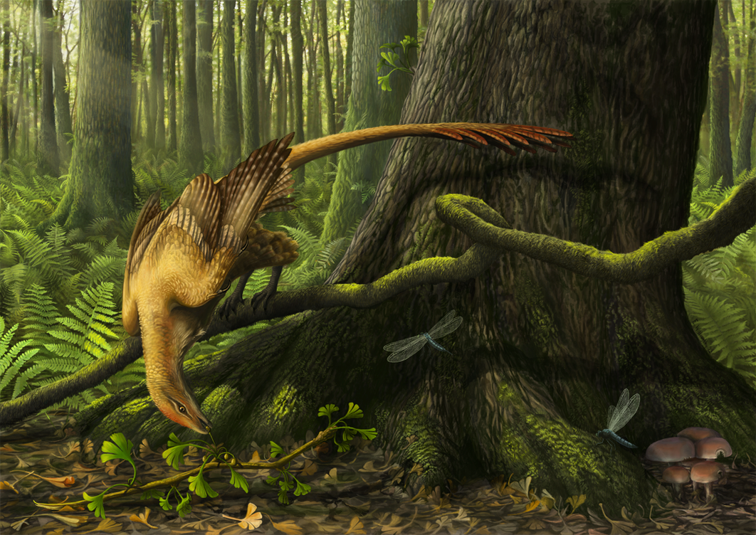 Jeholornis in the Morning Light by EWilloughby