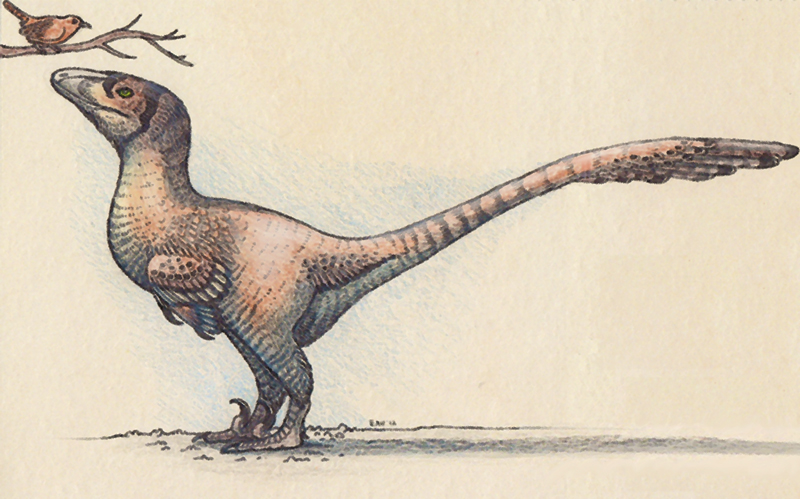 deinonychus_with_wren_by_ewilloughby-d53lhhh.jpg