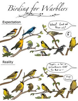 Birding for Warblers
