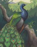 Haunts of the Peacock