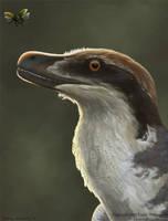 Acheroraptor by EWilloughby