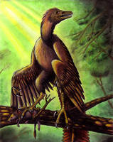 Archaeopteryx: Perched by EWilloughby