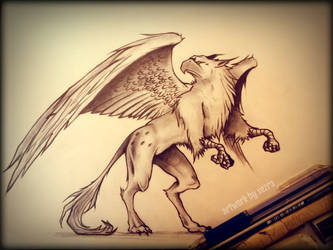 griffin training sketch by Xezra