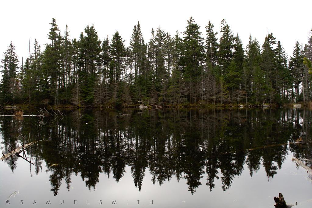 Mountain lake by Cloud-Dragonz