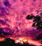 Luminous skies