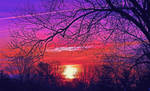 colorful sunrise of spring