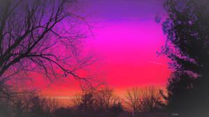 Radiant spring sunrise